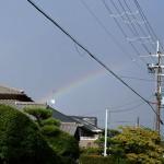 久しぶりにでっかい虹を見る