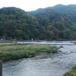 本日の京都嵐山