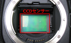 200905041