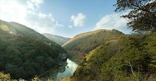 20100129-arashiyama2