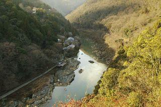20100129-arashiyama