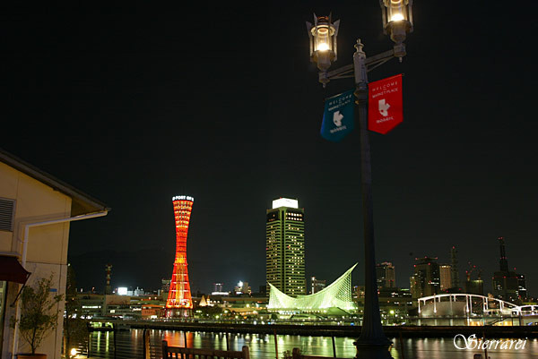 Kobe122406_2