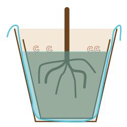 コガネムシの幼虫対策