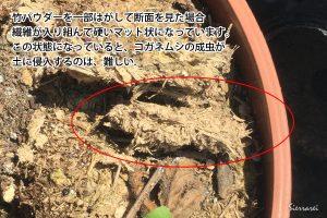 竹パウダー