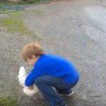 ネコをハグしようとした少年の動画・・・私てきには、ハグ後にでてくる左上の生き物のほうが気になる